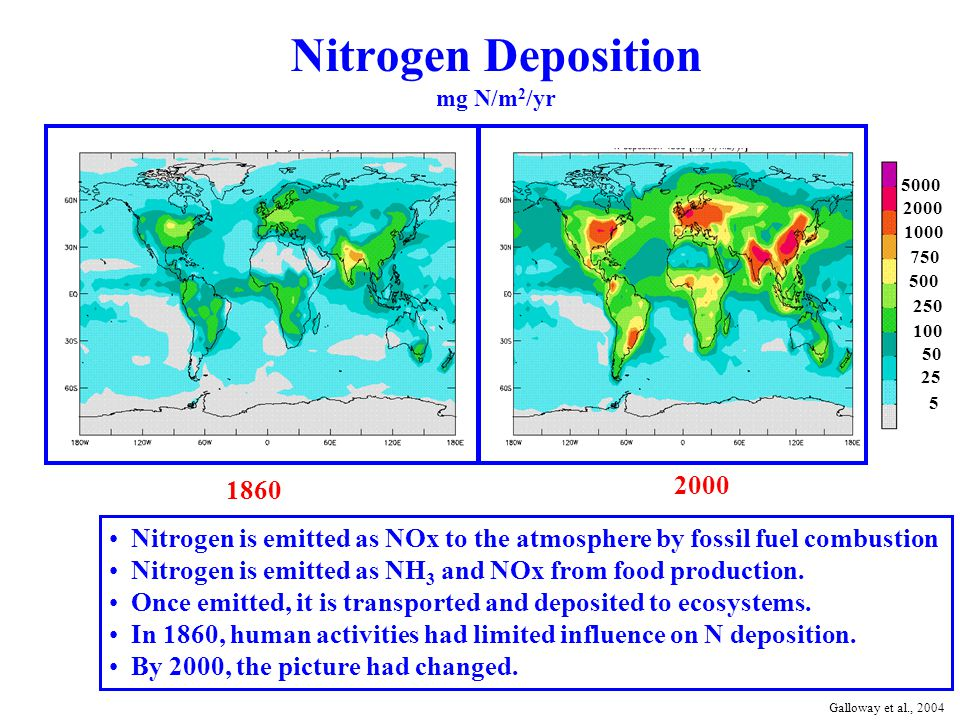 Nitrogen Deposition mg N/m 2 /yr 1860 2000 5000 2000 1000 750 500 250 100 50 25 5 Nitrogen is emitted as NOx to the atmosphere by fossil fuel combustion Nitrogen is emitted as NH 3 and NOx from food production.