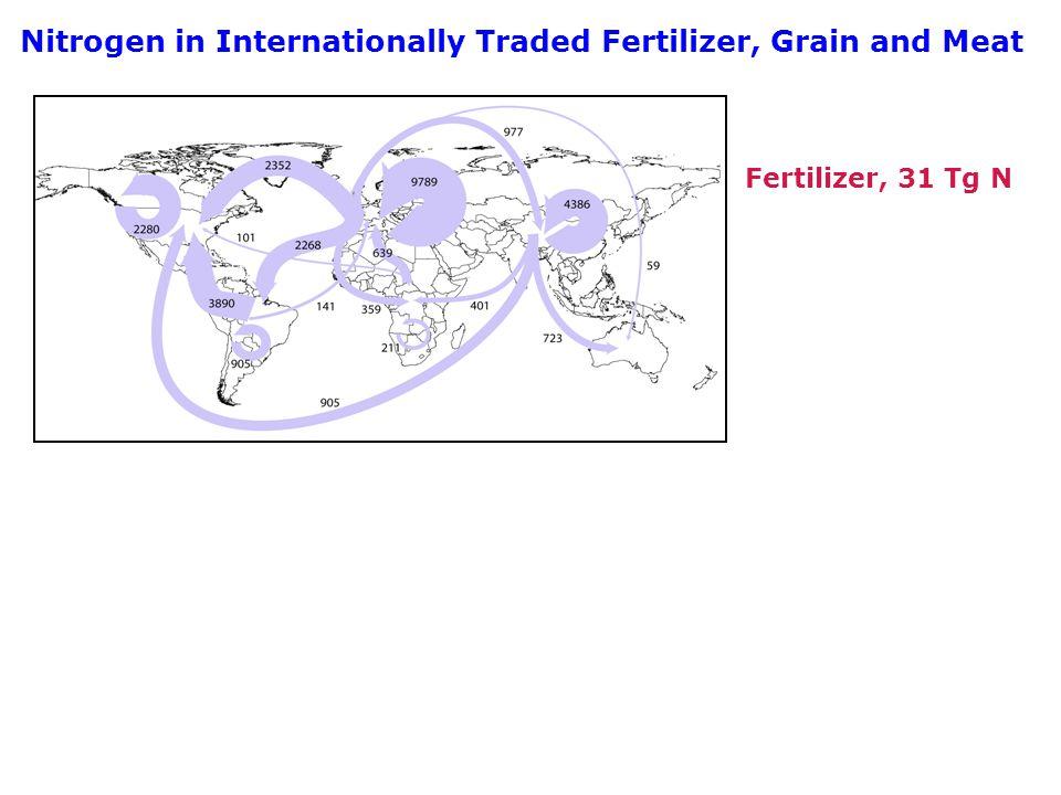 Nitrogen in Internationally Traded Fertilizer, Grain and Meat Fertilizer, 31 Tg N