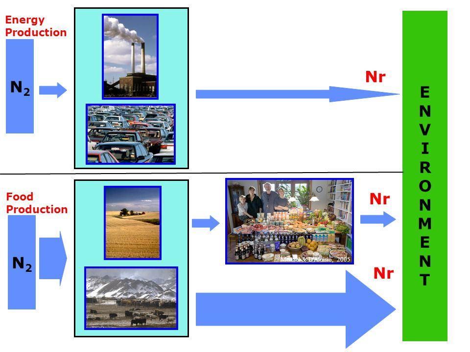 N2N2 ENVIRONMENTENVIRONMENT Nr N2N2 Energy Production Food Production Menzel & D Aluisio, 2005