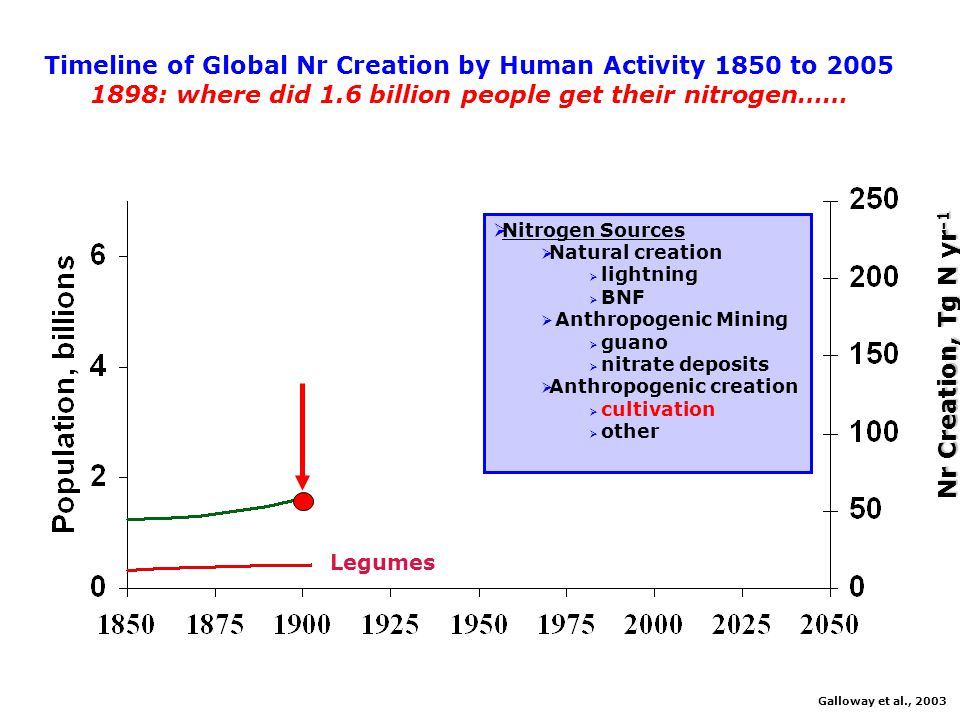 Timeline of Global Nr Creation by Human Activity 1850 to 2005 1898: where did 1.6 billion people get their nitrogen……  Nitrogen Sources  Natural creation  lightning  BNF  Anthropogenic Mining  guano  nitrate deposits  Anthropogenic creation  cultivation  other Galloway et al., 2003 Legumes Nr Creation, Tg N yr -1