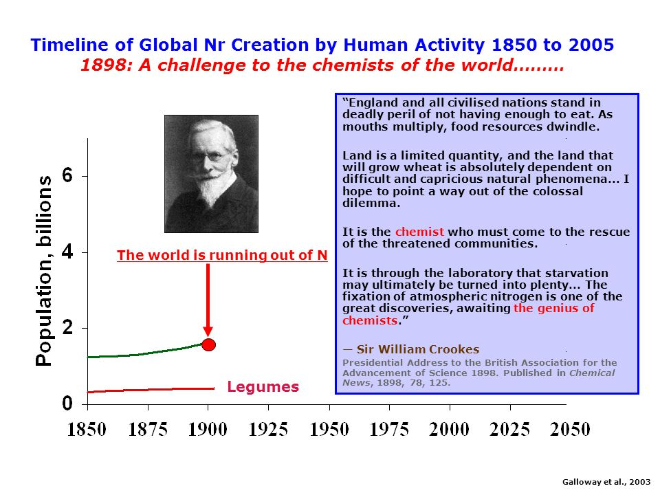 ENVIRONMENTENVIRONMENT Too Much Nitrogen; Too Many Consequences Smog, Haze Eutrophication Forest Die-back Acidification Global Warming Ozone Hole John Aber