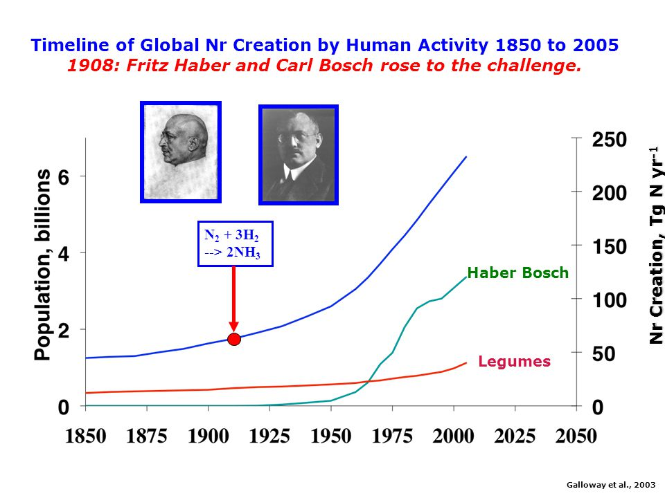 Timeline of Global Nr Creation by Human Activity 1850 to 2005 In 2005 ~190 Tg Nr was created by humans.