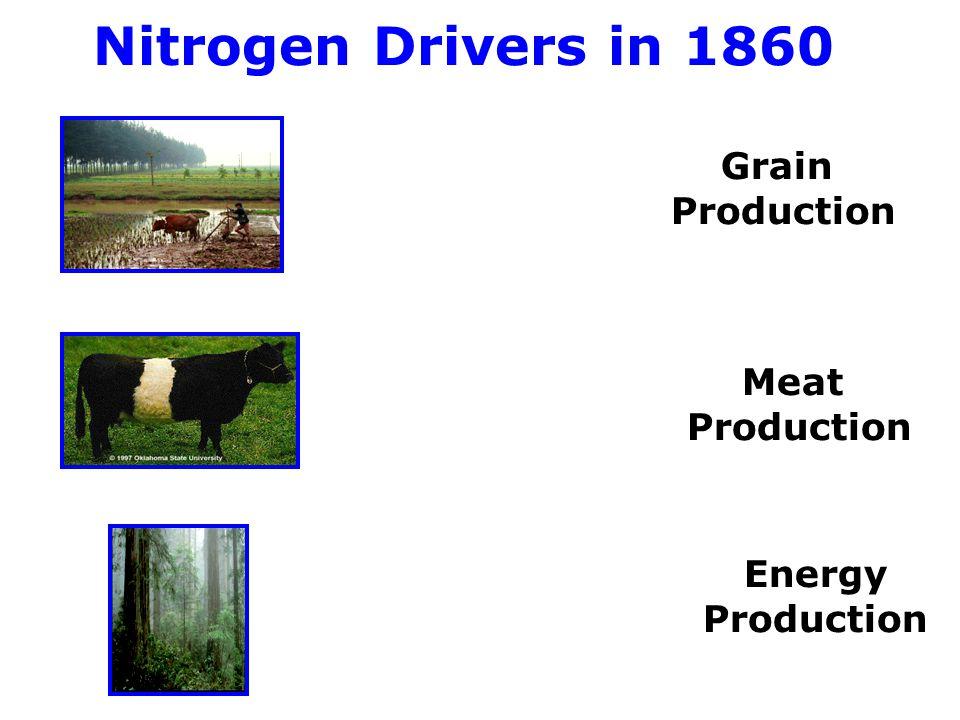 Control Points in the Nitrogen Cycle 190 Tg N/yr Galloway et al, 2008