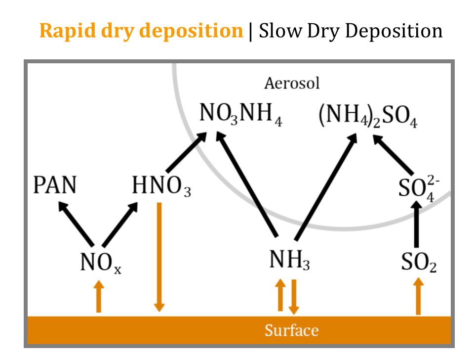 Rapid dry deposition | Slow Dry Deposition