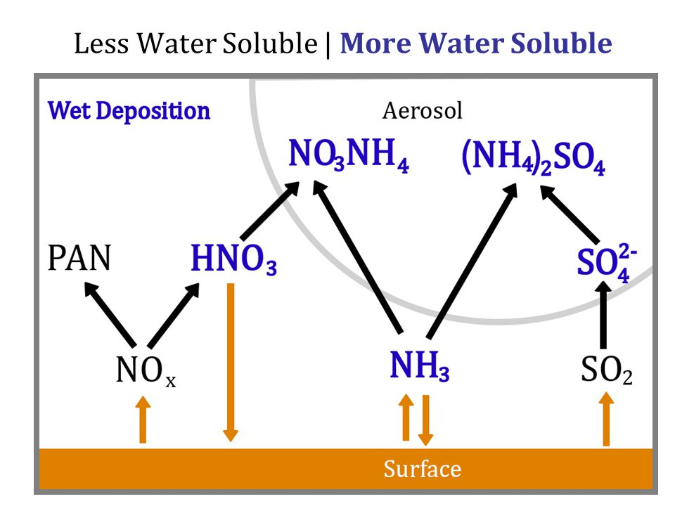 Less Water Soluble | More Water Soluble