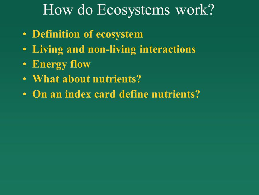 How do Ecosystems work.