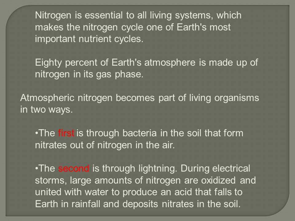 Nitrogen is essential to all living systems, which makes the nitrogen cycle one of Earth s most important nutrient cycles.