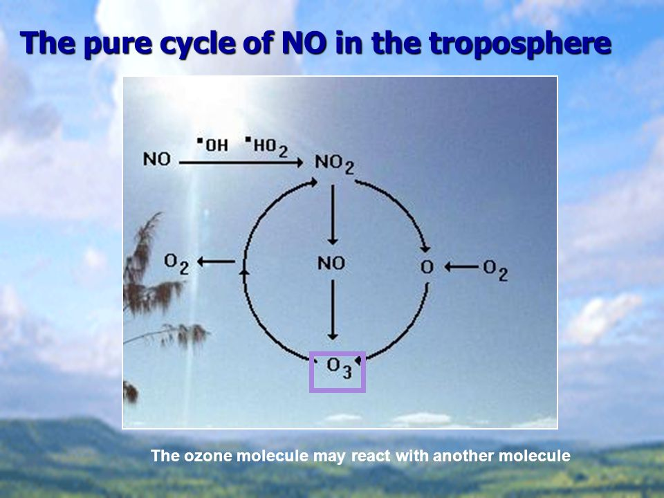 The pure cycle of NO in the troposphere The ozone molecule may react with another molecule