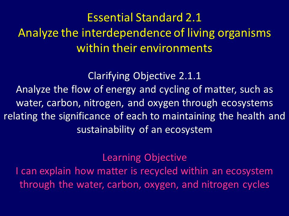Essential Standard 2.1 Analyze the interdependence of living organisms within their environments Clarifying Objective 2.1.1 Analyze the flow of energy and cycling of matter, such as water, carbon, nitrogen, and oxygen through ecosystems relating the significance of each to maintaining the health and sustainability of an ecosystem Learning Objective I can explain how matter is recycled within an ecosystem through the water, carbon, oxygen, and nitrogen cycles