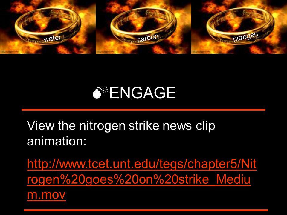 water carbon nitrogen  ENGAGE View the nitrogen strike news clip animation: http://www.tcet.unt.edu/tegs/chapter5/Nit rogen%20goes%20on%20strike_Mediu m.mov