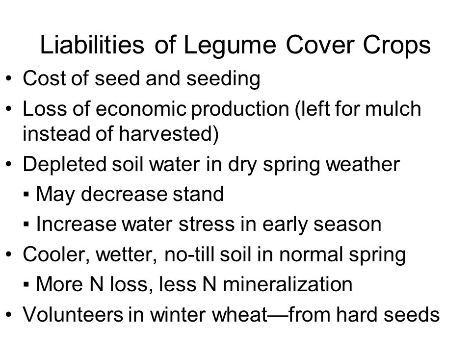 Liabilities of Legume Cover Crops Cost of seed and seeding Loss of economic production (left for mulch instead of harvested) Depleted soil water in dr