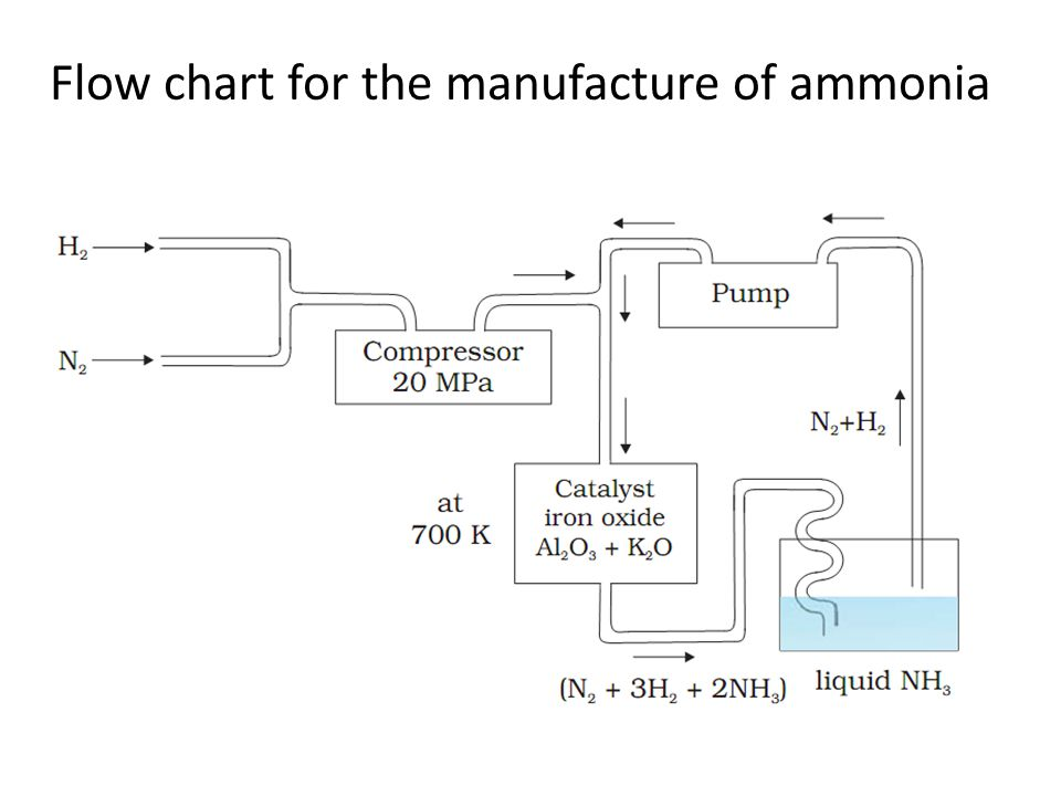Flow chart for the manufacture of ammonia