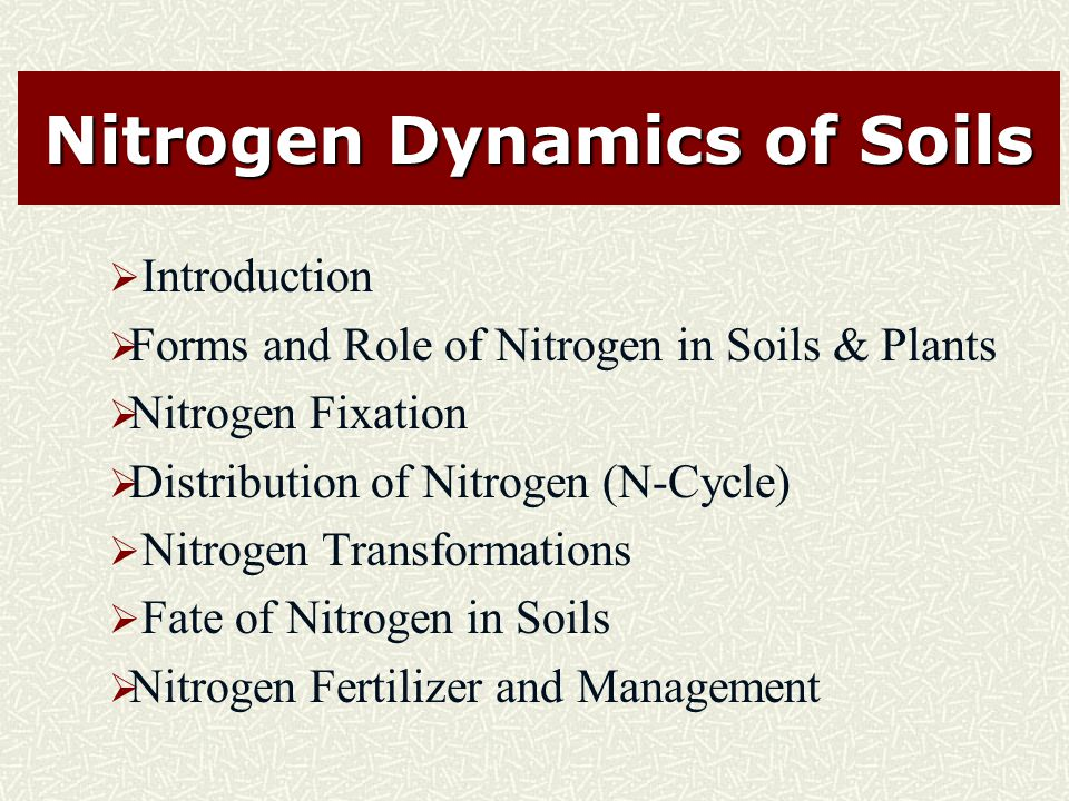 Nitrogen Dynamics of Soils  Introduction  Forms and Role of Nitrogen in Soils & Plants  Nitrogen Fixation  Distribution of Nitrogen (N-Cycle)  Nitrogen Transformations  Fate of Nitrogen in Soils  Nitrogen Fertilizer and Management