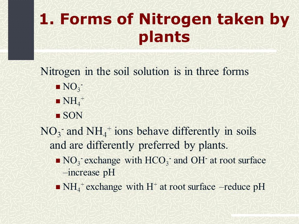 1. Forms of Nitrogen taken by plants Nitrogen in the soil solution is in three forms NO 3 - NH 4 + SON NO 3 - and NH 4 + ions behave differently in so