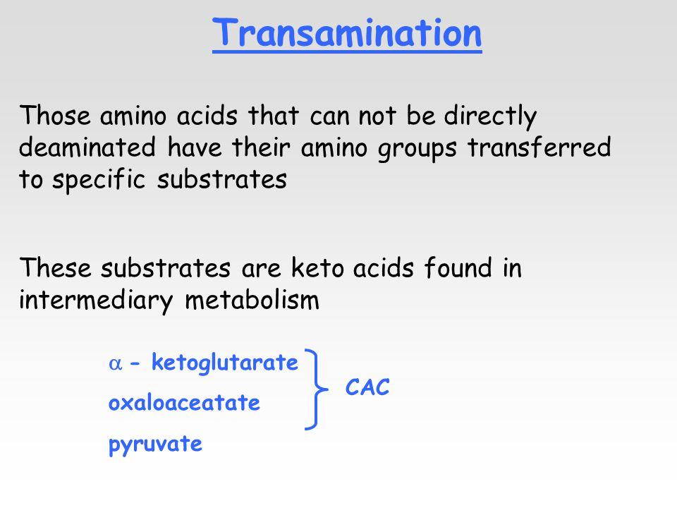 Transamination Those amino acids that can not be directly deaminated have their amino groups transferred to specific substrates These substrates are keto acids found in intermediary metabolism  - ketoglutarate oxaloaceatate pyruvate CAC