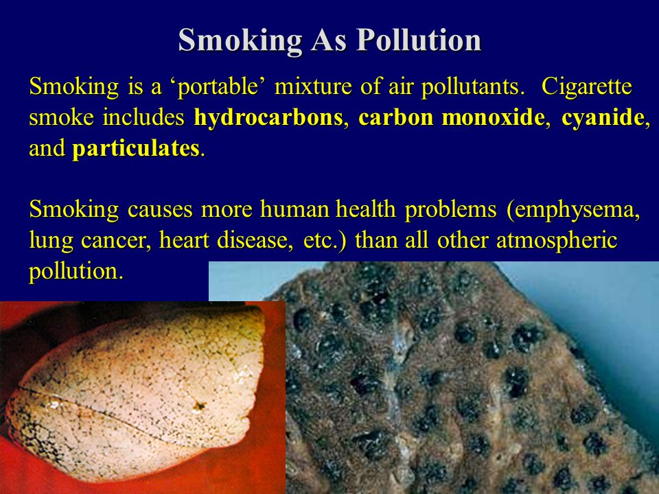 Smoking As Pollution Smoking is a 'portable' mixture of air pollutants.
