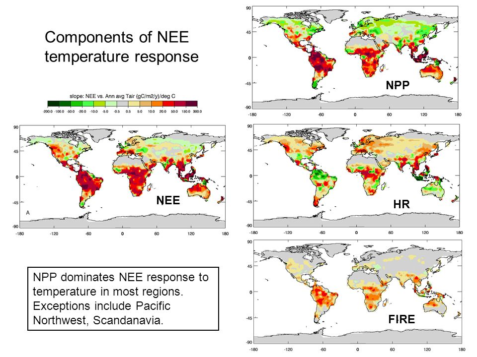 FIRE HR NPP NEE Components of NEE temperature response NPP dominates NEE response to temperature in most regions.