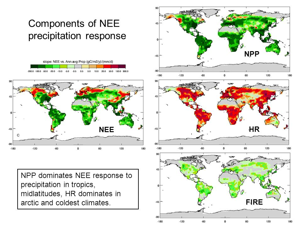 FIRE HR NPP NEE Components of NEE precipitation response NPP dominates NEE response to precipitation in tropics, midlatitudes, HR dominates in arctic and coldest climates.