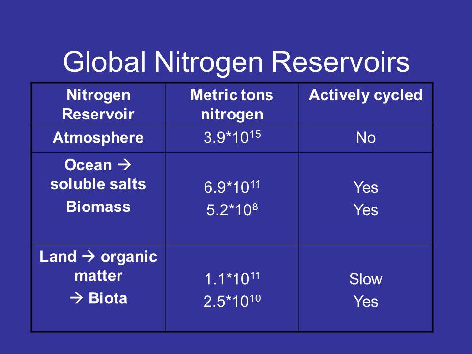 Forms of Nitrogen Urea  CO(NH 2 ) 2 Ammonia  NH 3 (gaseous) Ammonium  NH 4 Nitrate  NO 3 Nitrite  NO 2 Atmospheric Dinitrogen  N 2 Organic N