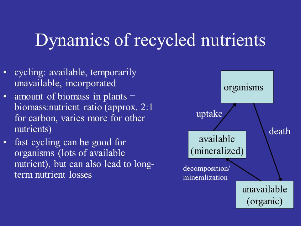 Local and global cycling Local vs. global feedbacks in nutrient dynamics (recycling vs.