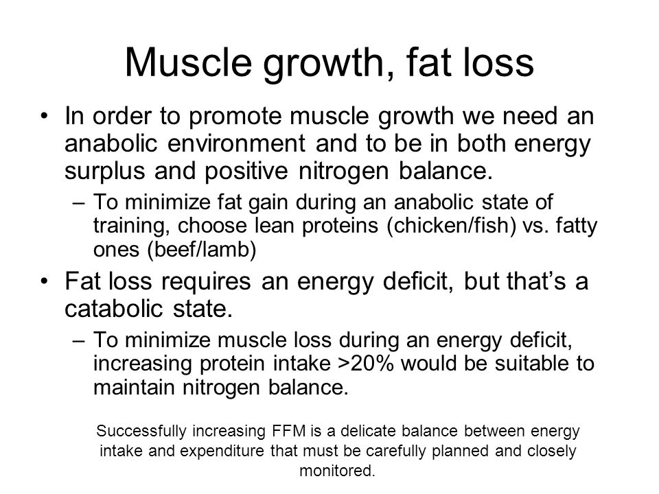 Muscle growth, fat loss In order to promote muscle growth we need an anabolic environment and to be in both energy surplus and positive nitrogen balance.