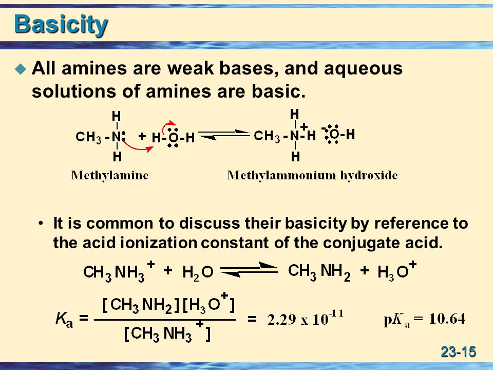23-15 Basicity  All amines are weak bases, and aqueous solutions of amines are basic.