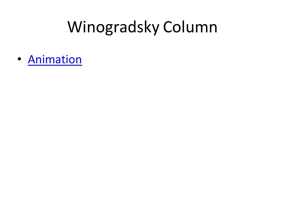 Winogradsky Column Animation
