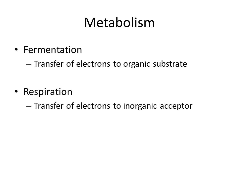 Metabolism Fermentation – Transfer of electrons to organic substrate Respiration – Transfer of electrons to inorganic acceptor