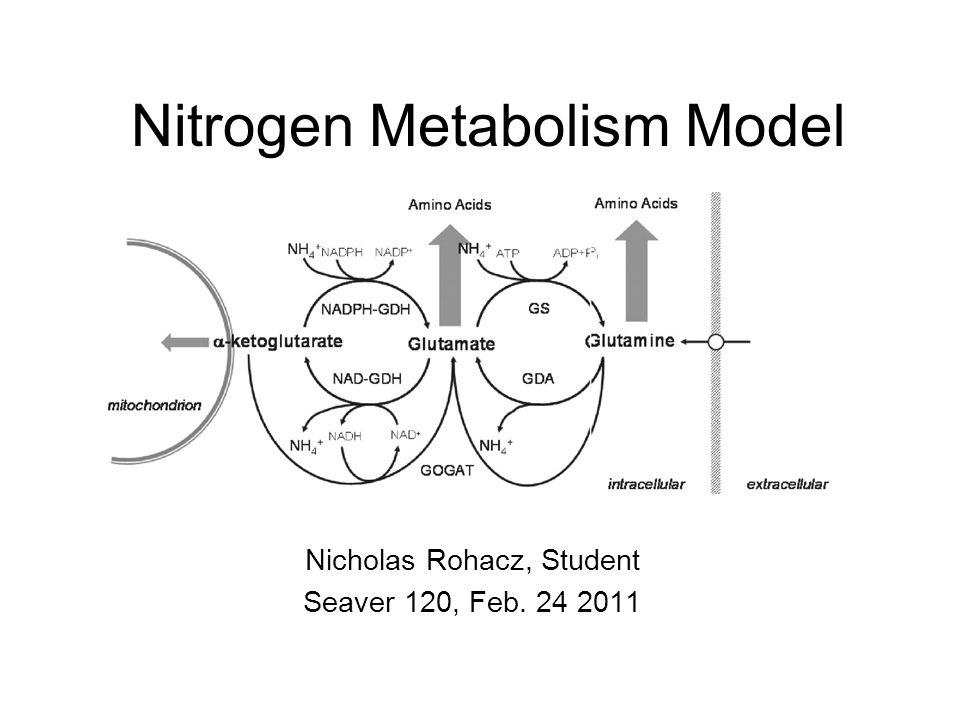 Nitrogen Metabolism Model Nicholas Rohacz, Student Seaver 120, Feb. 24 2011