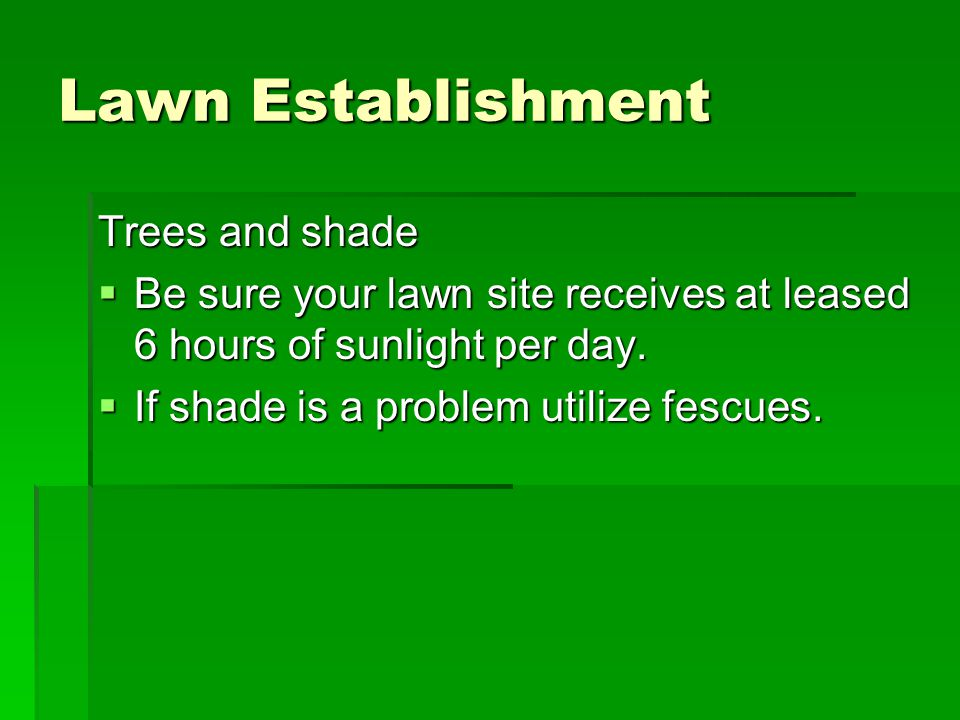 Lawn Establishment Trees and shade  Be sure your lawn site receives at leased 6 hours of sunlight per day.  If shade is a problem utilize fescues.