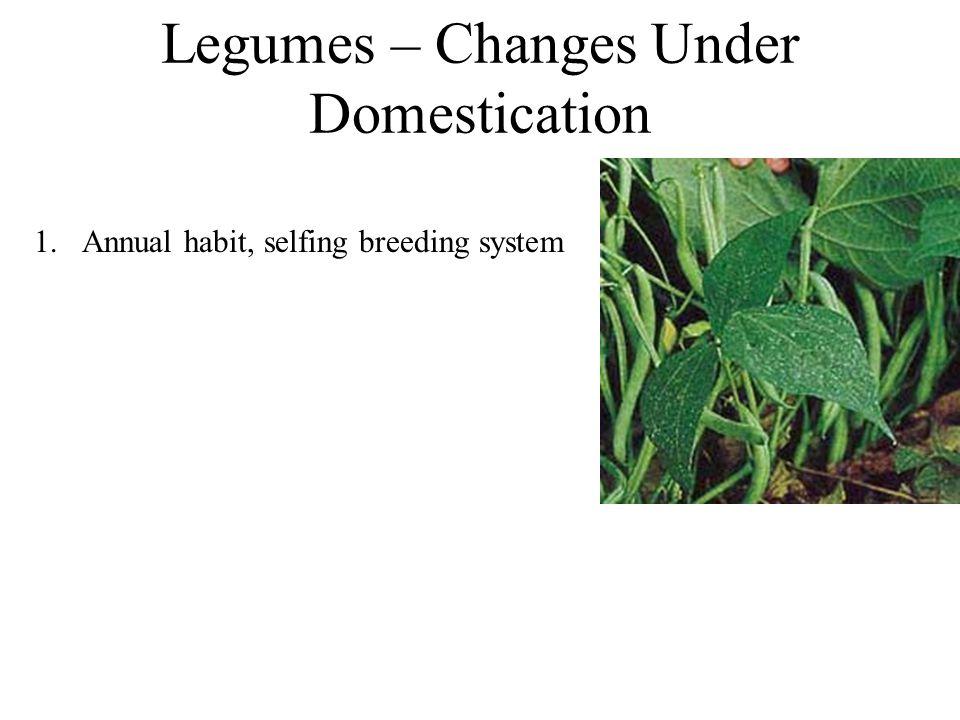 Legumes – Changes Under Domestication 1.Annual habit, selfing breeding system