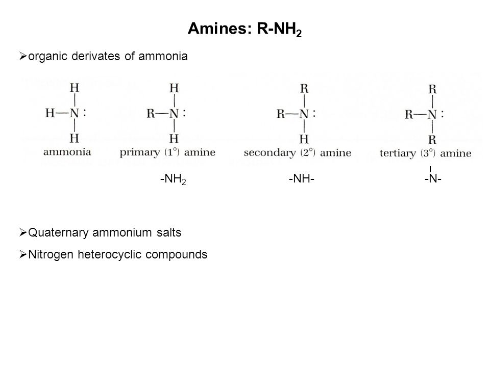 nitrosoamine Properties of amines:  basicity of amines (the unshared pair of electrons on the nitrogen atom)  form hydrogen bonds (the polarity of the carbon-nitrogen bond)  form nitrosoamines (nitrites in food may cause cancer)