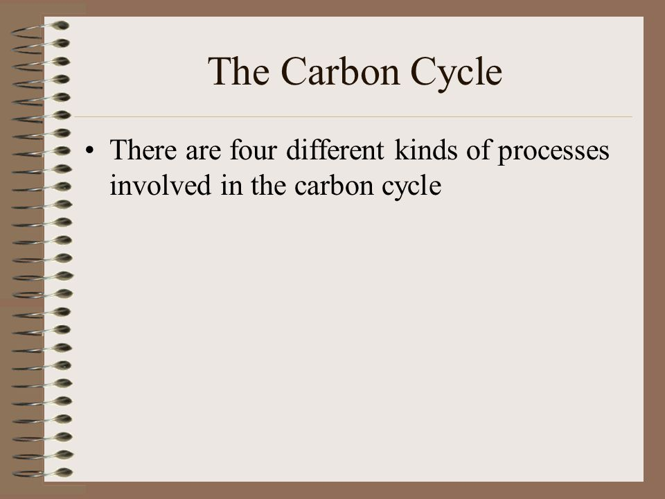 The Carbon Cycle There are four different kinds of processes involved in the carbon cycle
