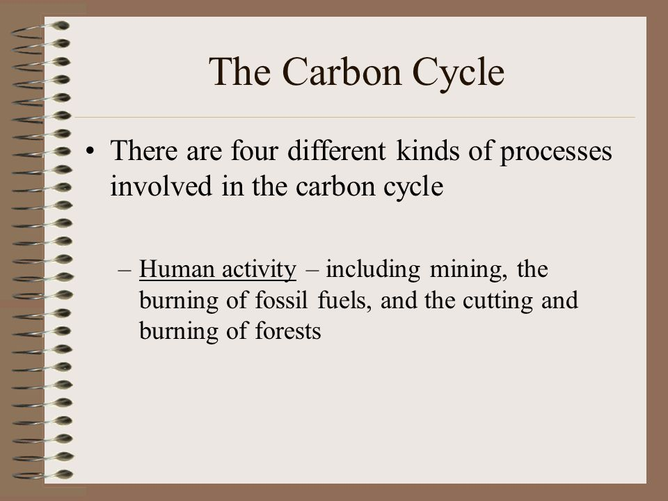 The Carbon Cycle There are four different kinds of processes involved in the carbon cycle –Human activity – including mining, the burning of fossil fuels, and the cutting and burning of forests