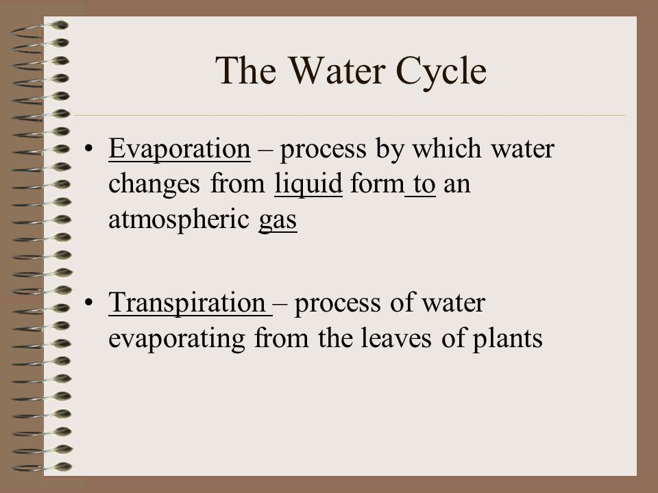 The Water Cycle Evaporation – process by which water changes from liquid form to an atmospheric gas Transpiration – process of water evaporating from the leaves of plants