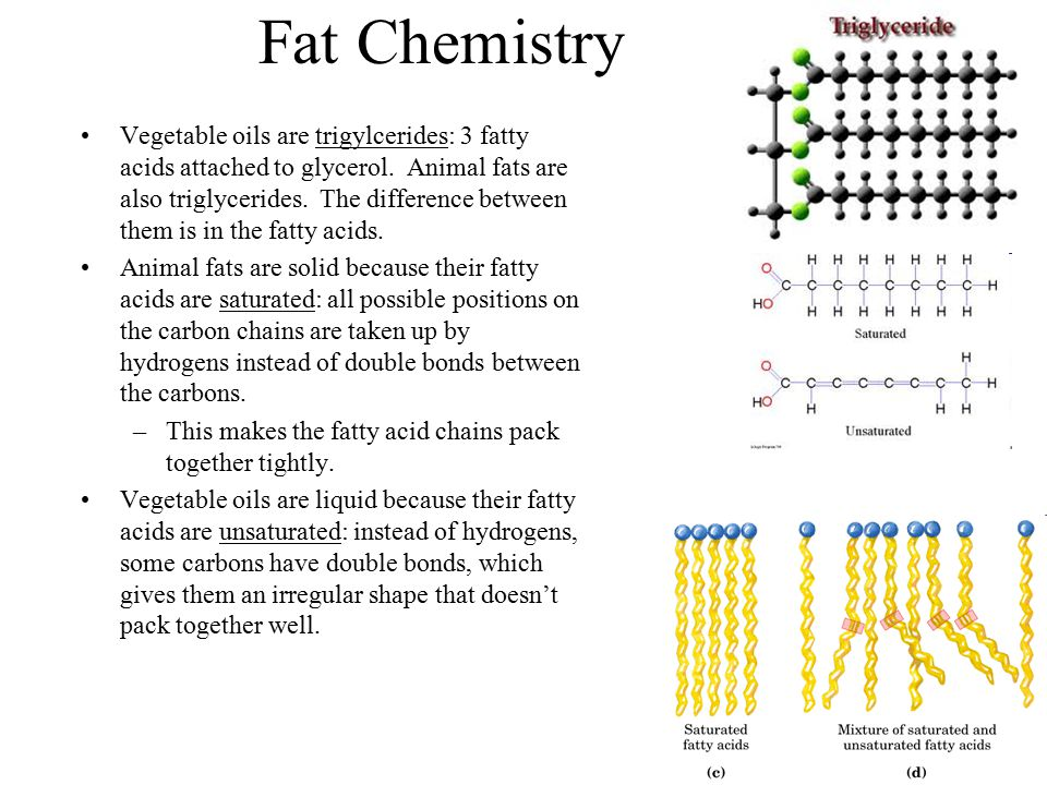 Fat Chemistry Vegetable oils are trigylcerides: 3 fatty acids attached to glycerol. Animal fats are also triglycerides. The difference between them is