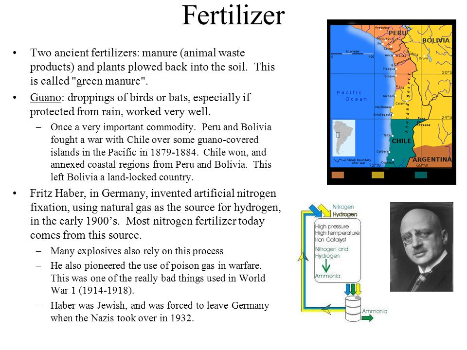Fertilizer Two ancient fertilizers: manure (animal waste products) and plants plowed back into the soil. This is called