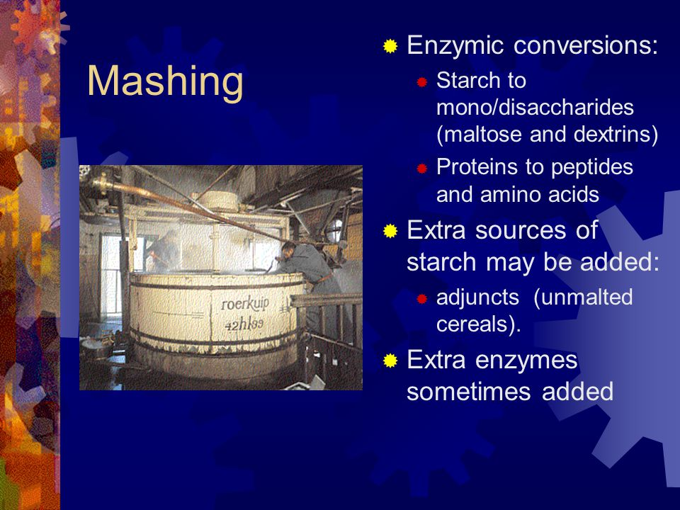 Mashing  Enzymic conversions:  Starch to mono/disaccharides (maltose and dextrins)  Proteins to peptides and amino acids  Extra sources of starch