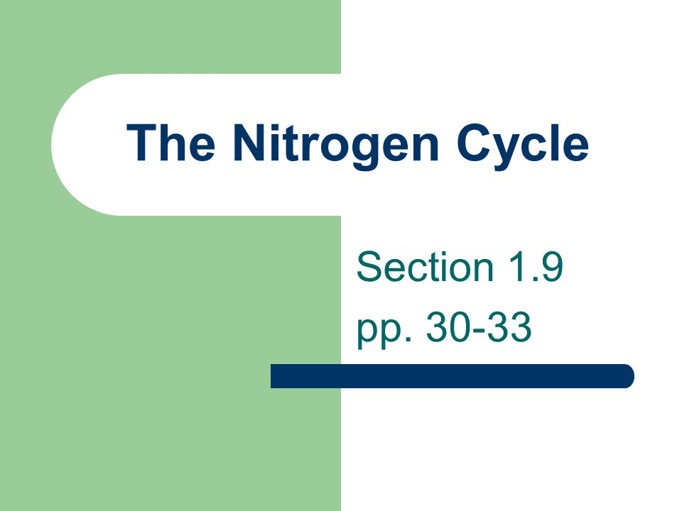 The Nitrogen Cycle Section 1.9 pp. 30-33
