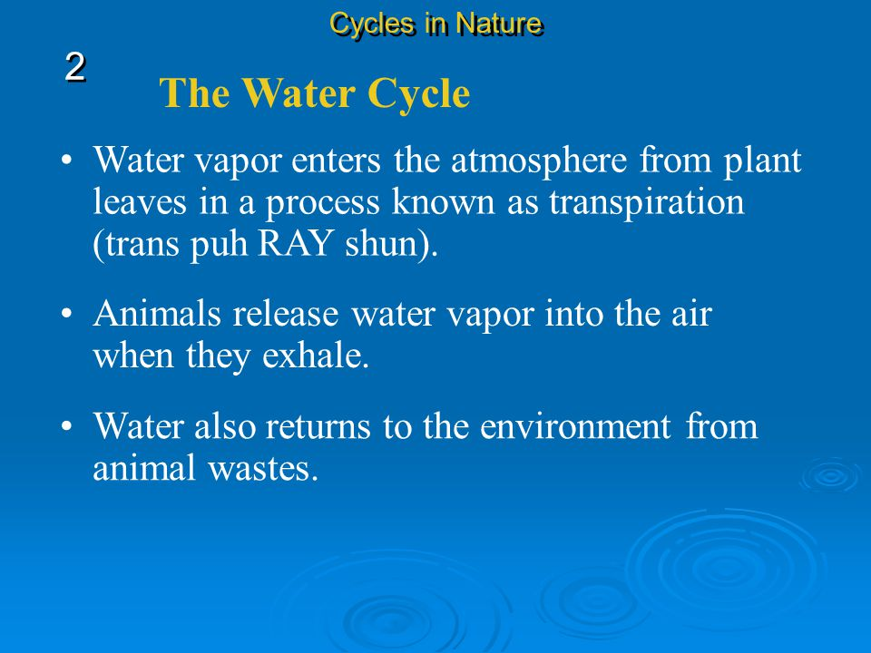The Water Cycle Evaporation takes place when liquid water changes into water vapor, which is a gas, and enters the atmosphere. Water evaporates from t