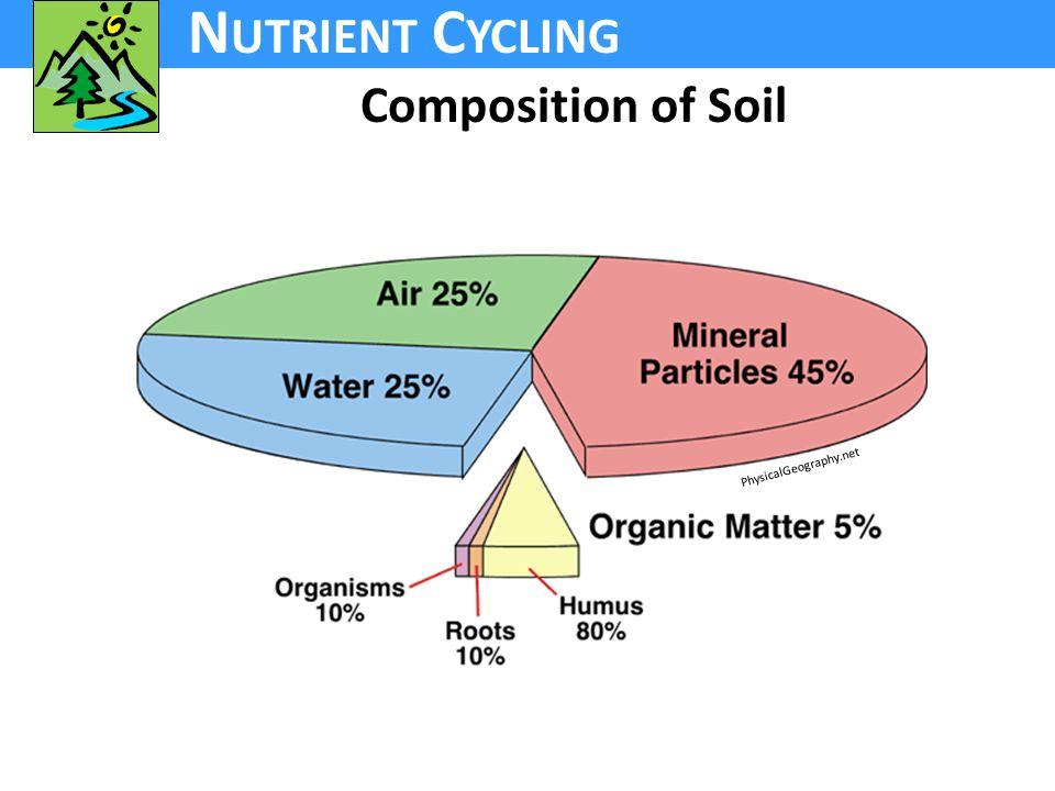 N UTRIENT C YCLING Composition of Soil PhysicalGeography.net