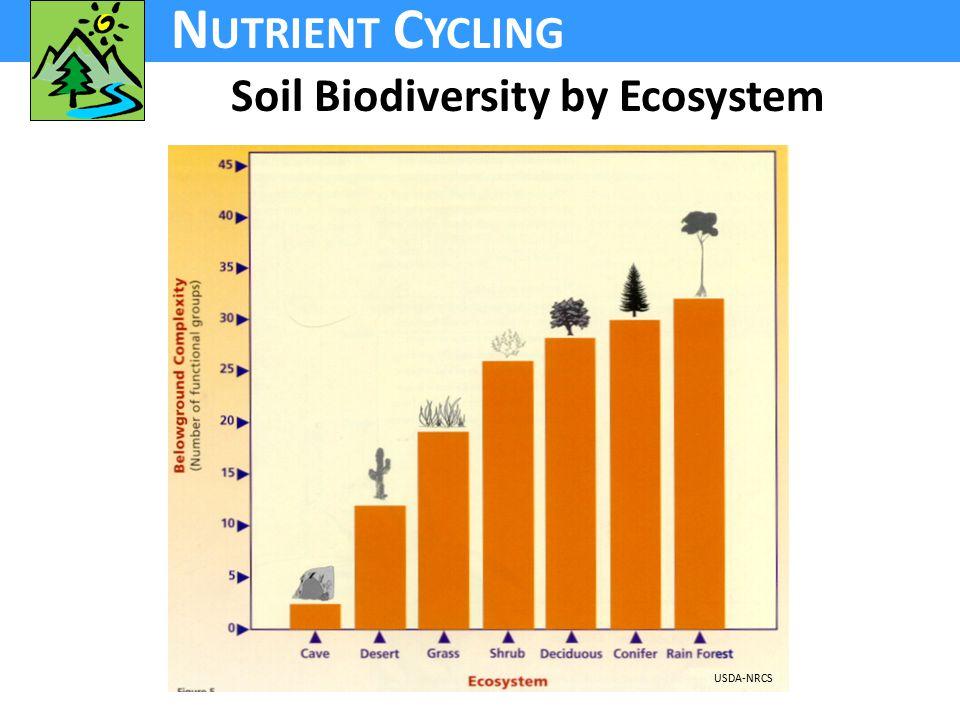 N UTRIENT C YCLING Soil Biodiversity by Ecosystem USDA-NRCS