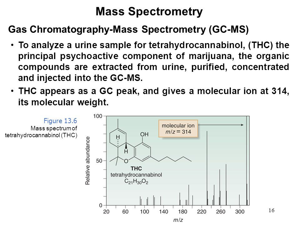 16 Mass Spectrometry Gas Chromatography-Mass Spectrometry (GC-MS) To analyze a urine sample for tetrahydrocannabinol, (THC) the principal psychoactive component of marijuana, the organic compounds are extracted from urine, purified, concentrated and injected into the GC-MS.
