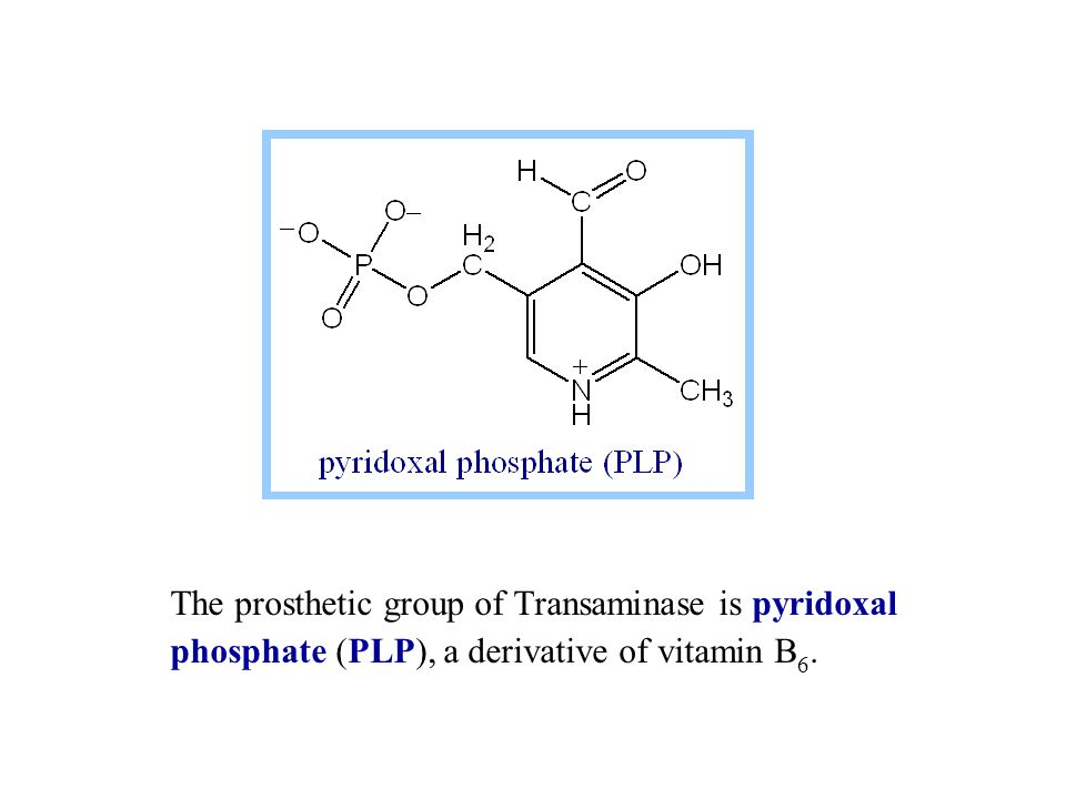 The prosthetic group of Transaminase is pyridoxal phosphate (PLP), a derivative of vitamin B 6.
