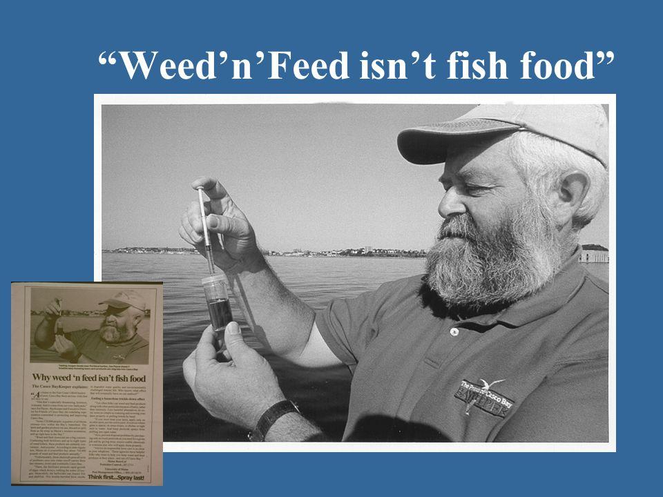 Weed'n'Feed isn't fish food