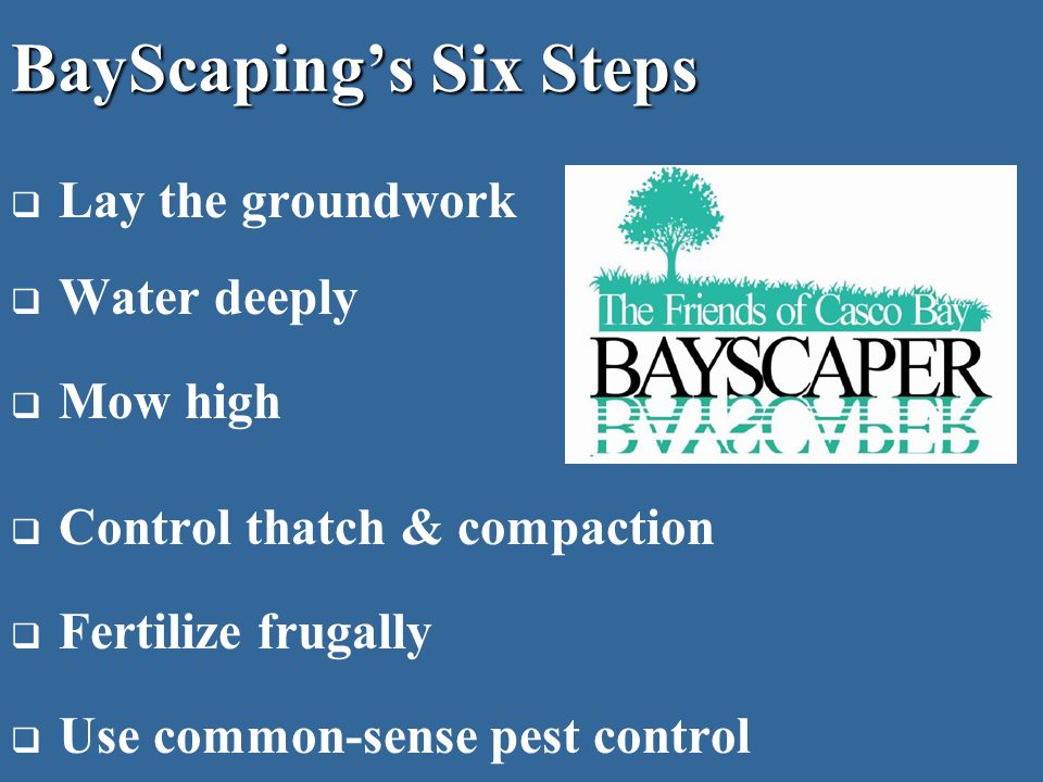 BayScaping's Six Steps  Lay the groundwork  Water deeply  Mow high  Control thatch & compaction  Fertilize frugally  Use common-sense pest control