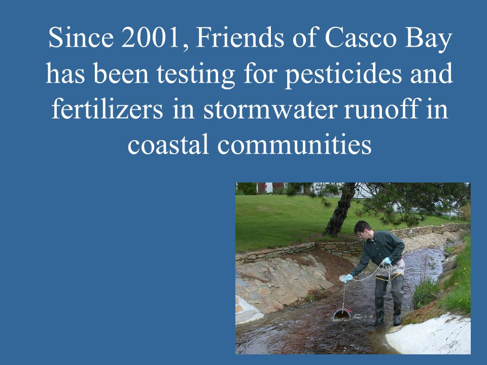 Since 2001, Friends of Casco Bay has been testing for pesticides and fertilizers in stormwater runoff in coastal communities