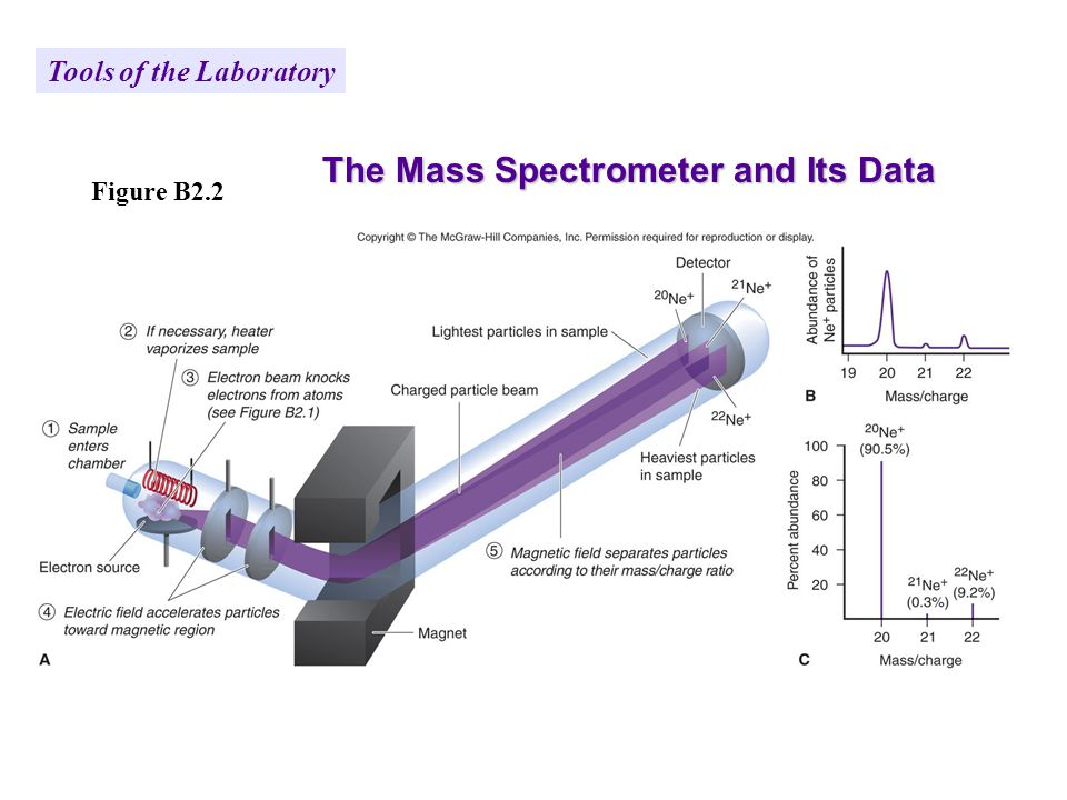 Figure B2.2 The Mass Spectrometer and Its Data Tools of the Laboratory