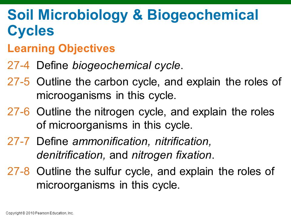 Copyright © 2010 Pearson Education, Inc. Learning Objectives Soil Microbiology & Biogeochemical Cycles 27-4Define biogeochemical cycle. 27-5Outline th