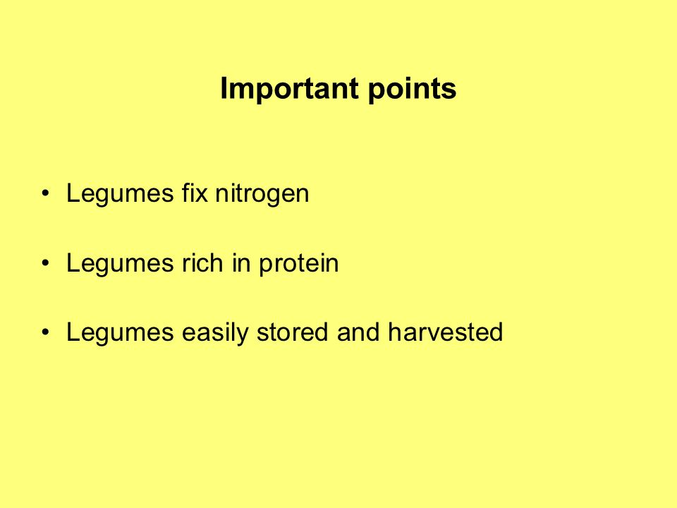 Important points Legumes fix nitrogen Legumes rich in protein Legumes easily stored and harvested